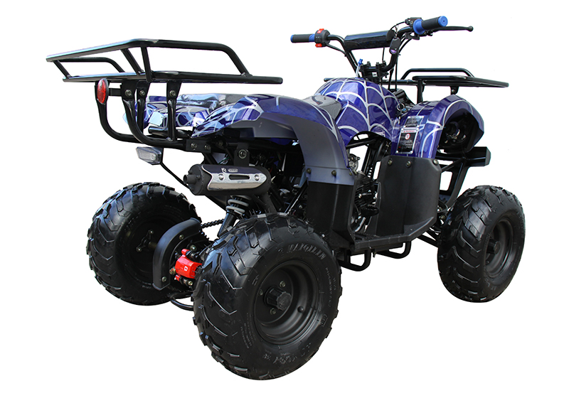 2021 Coolster ATV-3125R in Knoxville, Tennessee - Photo 6