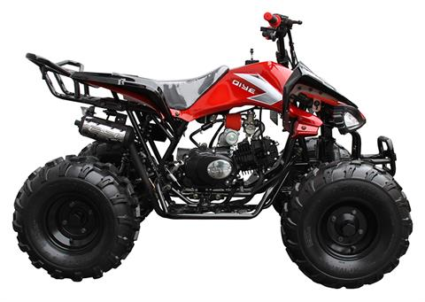 2021 Coolster ATV-3125CX-2 in Knoxville, Tennessee - Photo 1