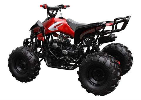 2021 Coolster ATV-3125CX-2 in Knoxville, Tennessee - Photo 5