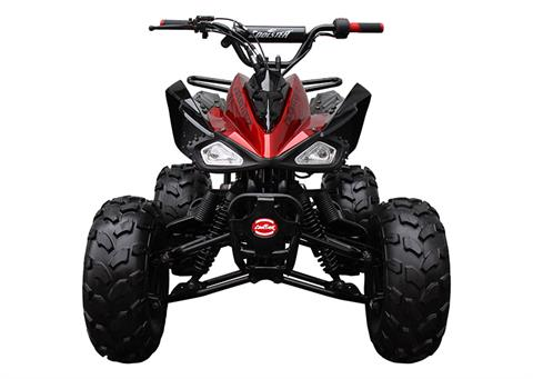 2021 Coolster ATV-3125CX-2 in Knoxville, Tennessee - Photo 7