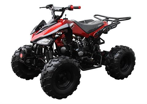 2021 Coolster ATV-3125CX-2 in Knoxville, Tennessee - Photo 4