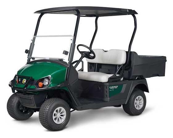 2020 Cushman Hauler 800 ELiTE in Fernandina Beach, Florida - Photo 1