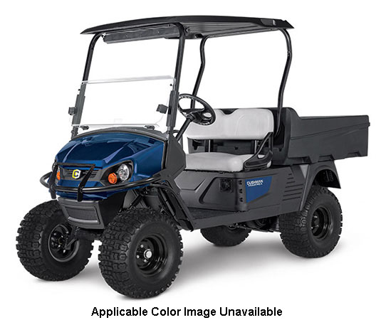 2020 Cushman Hauler Pro-X Electric in Marshall, Texas