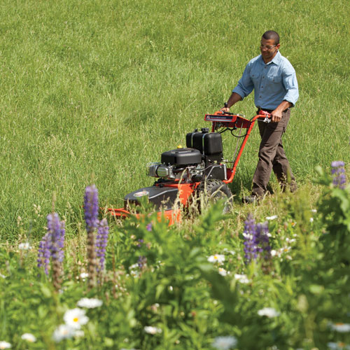 2015 DR Power Equipment 14.5 HP Pro, Walk-Behind. Electric-Start in Bigfork, Minnesota - Photo 3