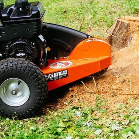2015 DR Power Equipment 14.5 ft-lb Pro Stump Grinder in Bigfork, Minnesota