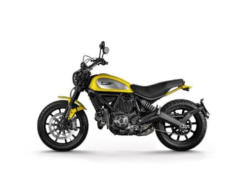 2015 Ducati Scrambler Icon in Medford, Massachusetts