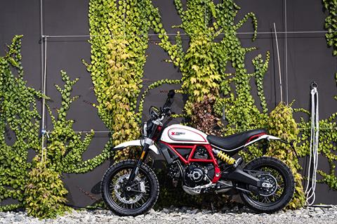 2019 Ducati Scrambler Desert Sled in Medford, Massachusetts - Photo 6