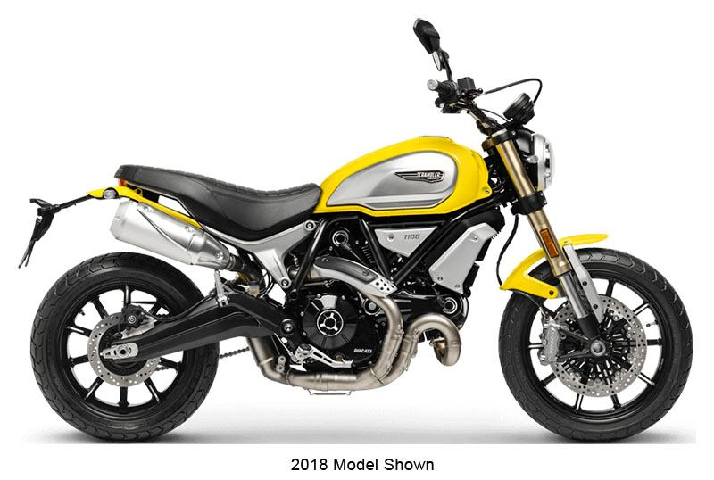 2019 Ducati Scrambler 1100 in New Haven, Connecticut