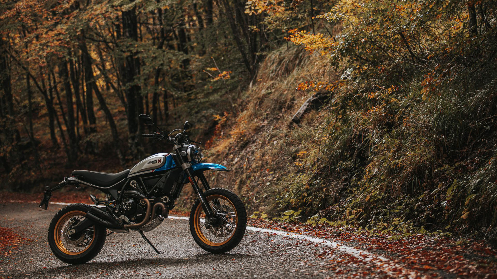 2021 Ducati Scrambler Desert Sled in Columbus, Ohio - Photo 15