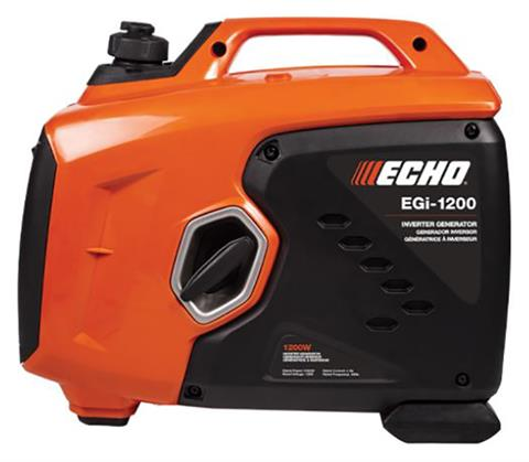 Echo EGi-1200 Generator in Battle Creek, Michigan