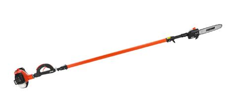 Echo PPT-2620 Power Pruner in Smithfield, Virginia