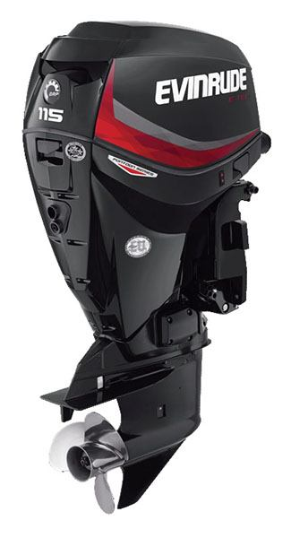 Evinrude E-TEC Pontoon 115 HP in Freeport, Florida