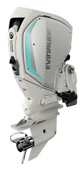 Evinrude E-TEC G2 200 HO (H200HWXC) in Wilmington, Illinois