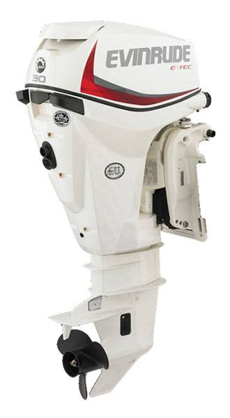 Evinrude E-TEC 30 HP (E30DTSL) in Wilmington, Illinois
