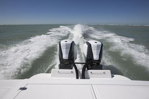 2015 Evinrude E4R4 in Deerwood, Minnesota