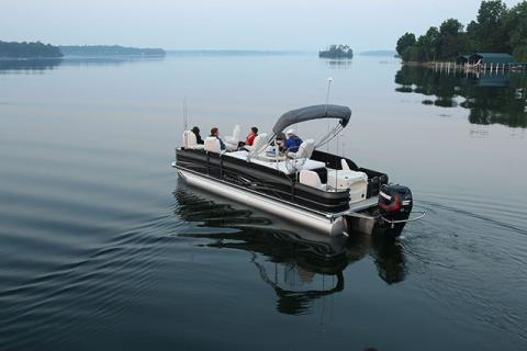 2015 Evinrude E25DPSL in Waxhaw, North Carolina