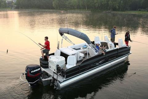 2015 Evinrude E50DTL in Deerwood, Minnesota