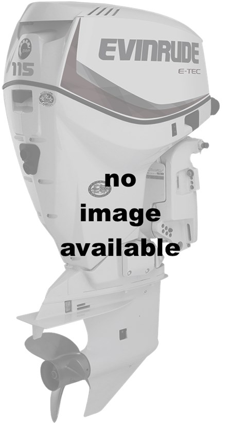 2016 Evinrude DE200CX in Sparks, Nevada