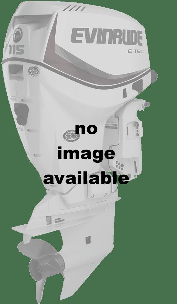 2016 Evinrude E150DGL in Sparks, Nevada