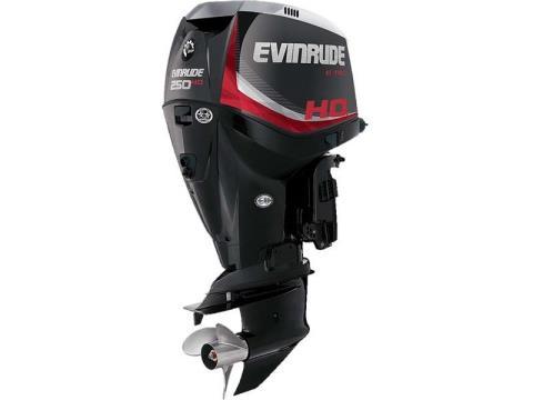 2016 Evinrude E250HGL in Sparks, Nevada