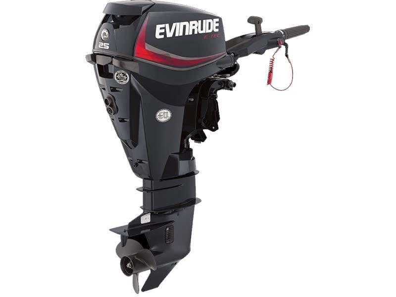 2016 Evinrude E25DGTL in Trego, Wisconsin