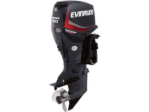 2016 Evinrude Pontoon E90GL in Sparks, Nevada