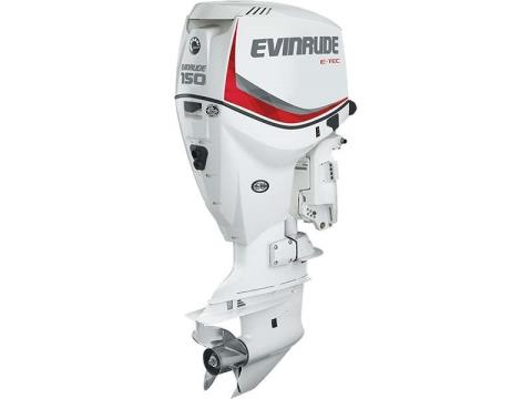 2017 Evinrude E150DCX in Freeport, Florida