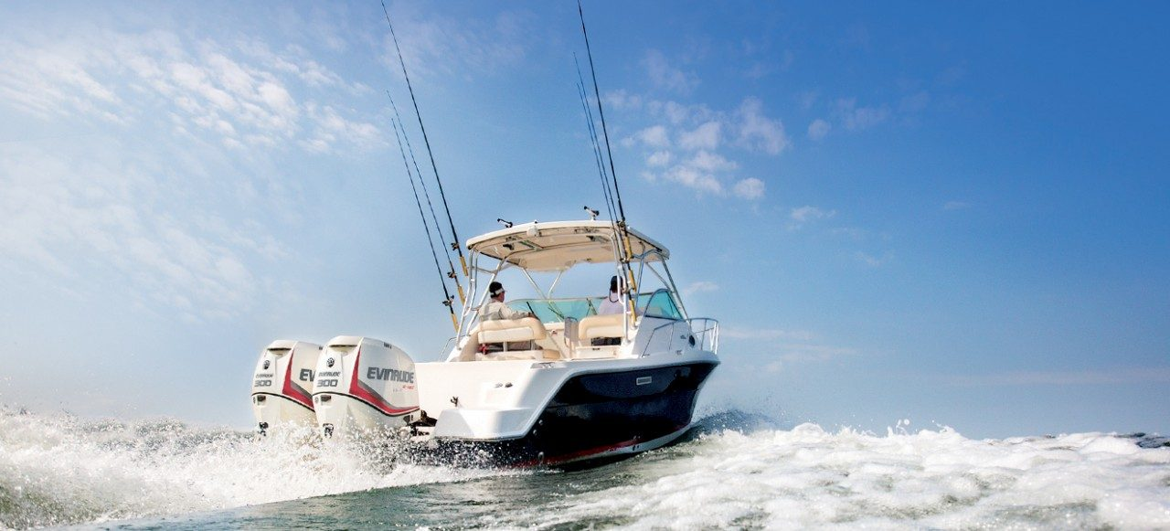 2017 Evinrude E200HGL HO in Oceanside, New York