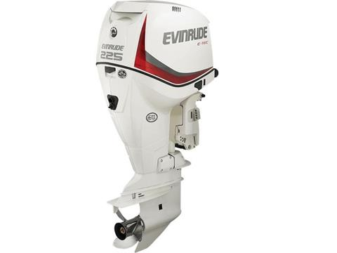 2017 Evinrude E225DCX in Eastland, Texas