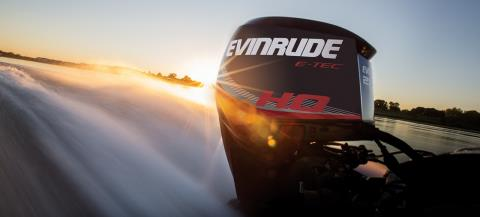 2017 Evinrude E225DCX in Black River Falls, Wisconsin