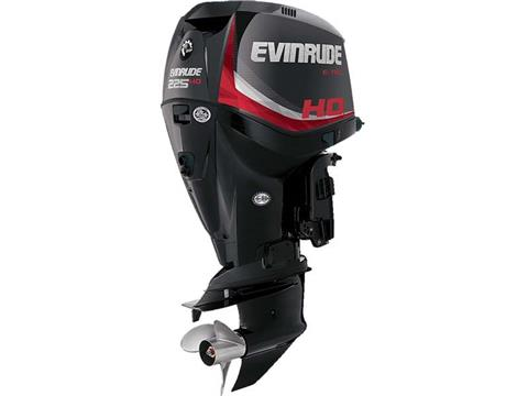 2017 Evinrude E225HGL in Eastland, Texas