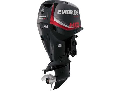 2017 Evinrude E225HGL in Freeport, Florida