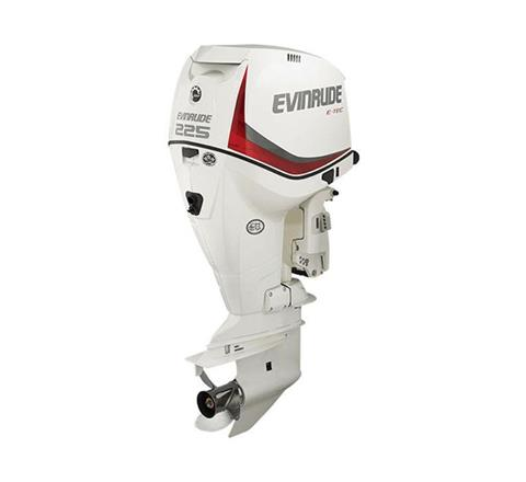 2017 Evinrude E225HSL in Sparks, Nevada