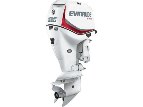 2017 Evinrude E250DCX in Freeport, Florida