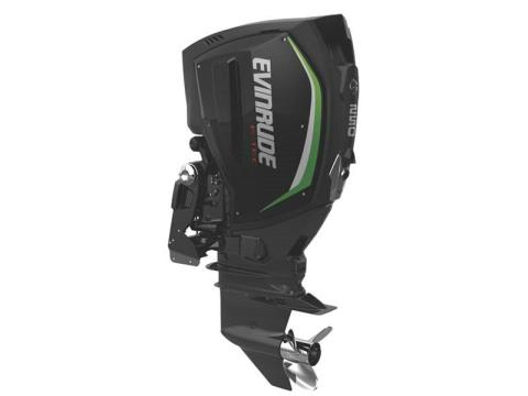 2017 Evinrude E-TEC G2 250 HP in Freeport, Florida