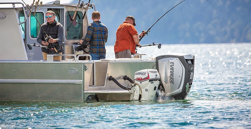 2017 Evinrude E15HTSL HO in Black River Falls, Wisconsin