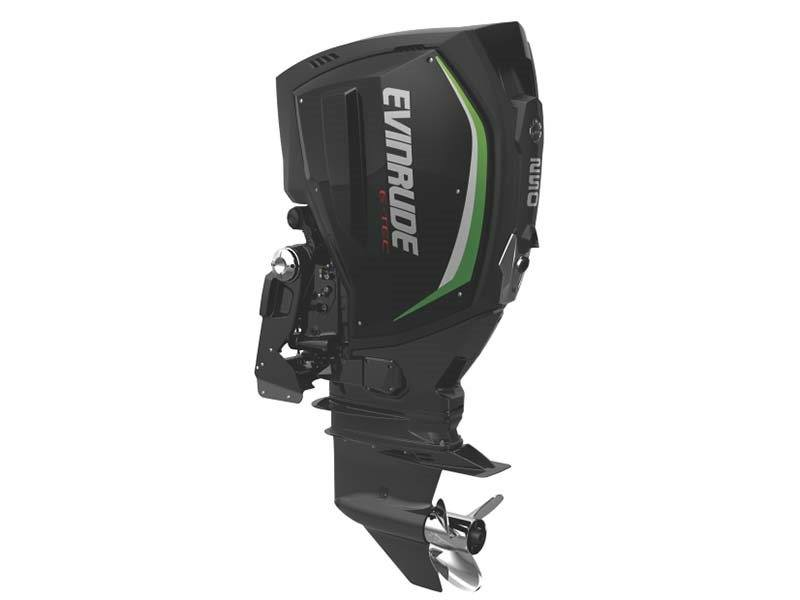 2017 Evinrude E-TEC G2 250 HP in Oceanside, New York