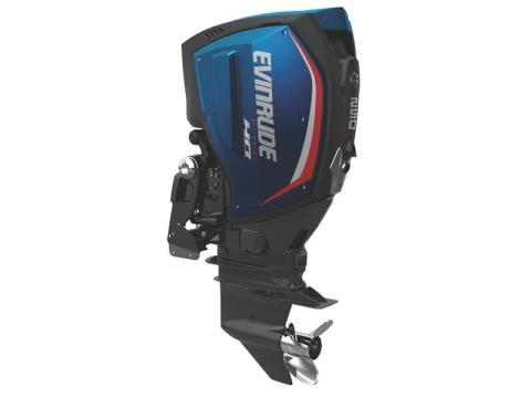 2017 Evinrude E-TEC G2 250 HO in Freeport, Florida