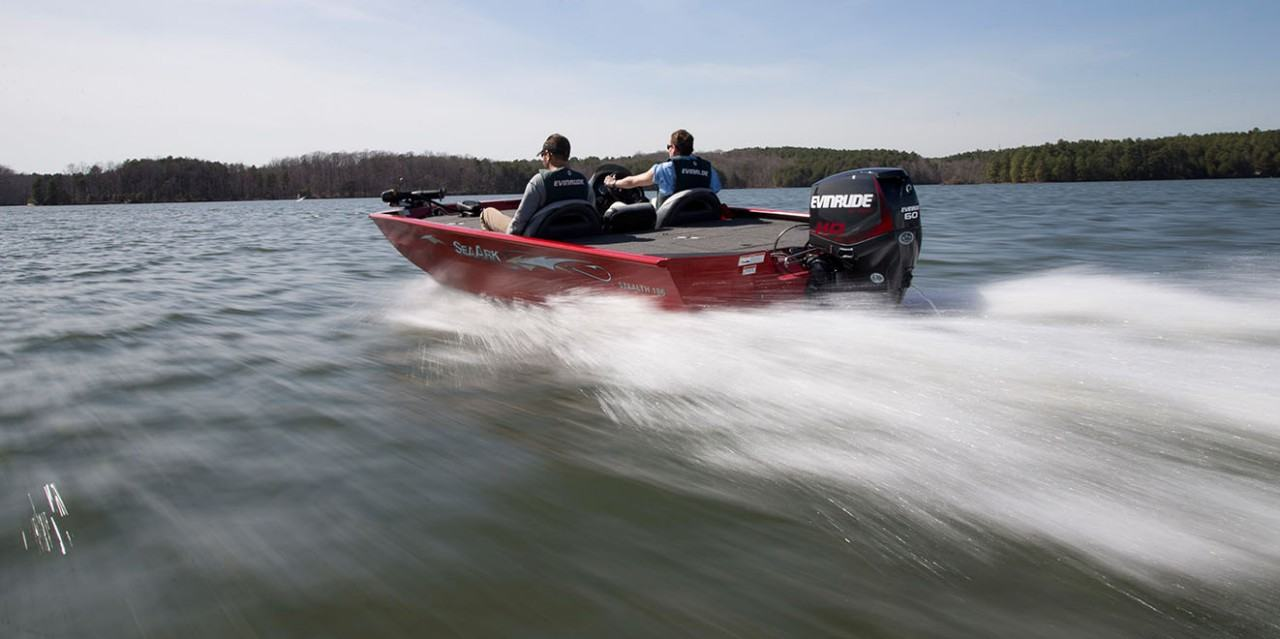 2017 Evinrude E25DPGL in Oceanside, New York