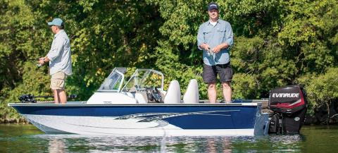 2017 Evinrude E30DRGL in Mountain Home, Arkansas