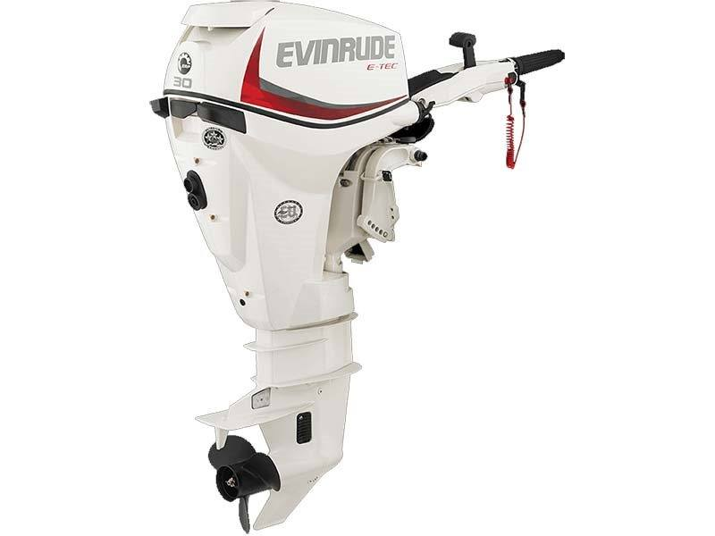 2017 Evinrude E30DTSL in Oceanside, New York