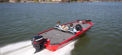 2017 Evinrude E30DTSL in Black River Falls, Wisconsin