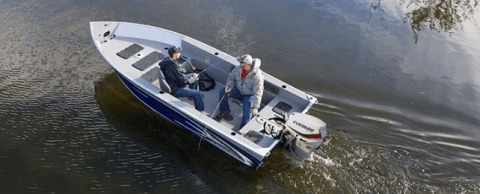 2017 Evinrude E40DPGL in Black River Falls, Wisconsin