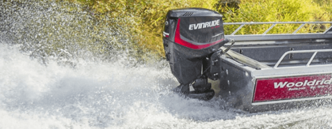 2017 Evinrude E40DPJL in Eastland, Texas