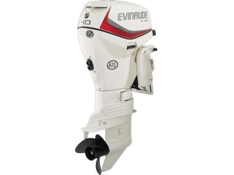 2017 Evinrude E40DSL in Freeport, Florida