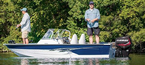 2017 Evinrude E40DSL in Deerwood, Minnesota