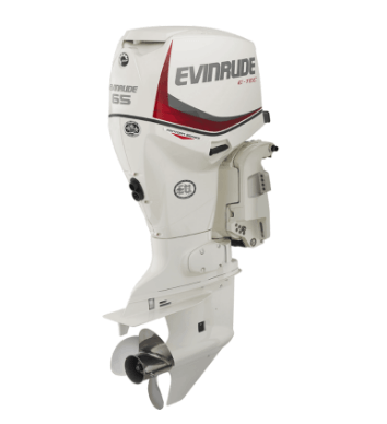 2017 Evinrude E65GNL in Freeport, Florida