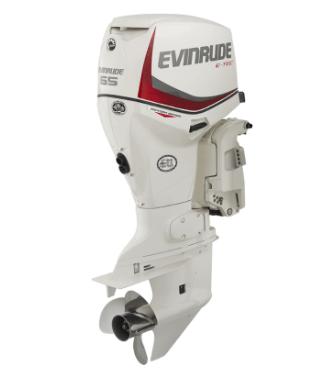 2017 Evinrude E65SNL in Mountain Home, Arkansas