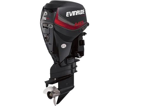 2018 Evinrude A115GHX HO in Black River Falls, Wisconsin