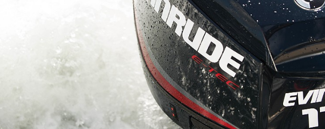 2018 Evinrude E115DGL in Black River Falls, Wisconsin
